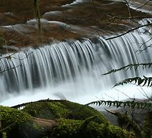 Sweet Creek Ledge Falls by CarrieAnn
