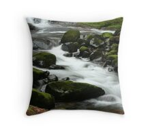 Sweet Creek Falls 3 Throw Pillow