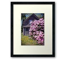 Purple Rhody House (Orleans Cape Cod) Framed Print