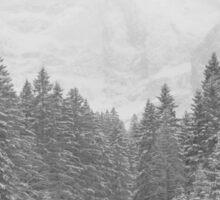 snow forest  Sticker