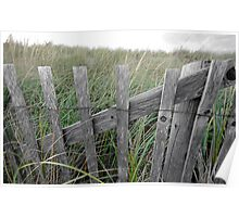 Cape Cod Snow Fence Poster