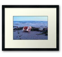 Whelk at Forest St. Beach (Chatham, Cape Cod) Framed Print