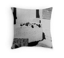 Jim Morrison grave 2 Throw Pillow