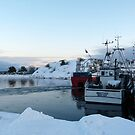 Ice Age - Harbour of Koster by HELUA