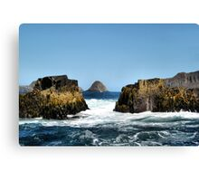 Bruny Island. Tasmania Canvas Print