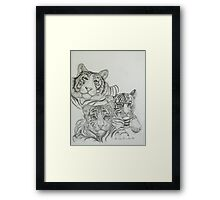 White Tigers-Family Photo Framed Print