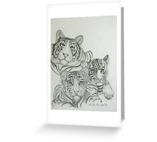 White Tigers-Family Photo Greeting Card
