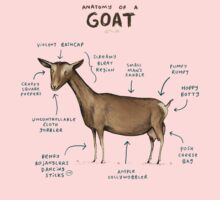 Anatomy of a Goat Kids Clothes