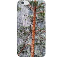28.2.2015: Pine Trees and Sleet II iPhone Case/Skin