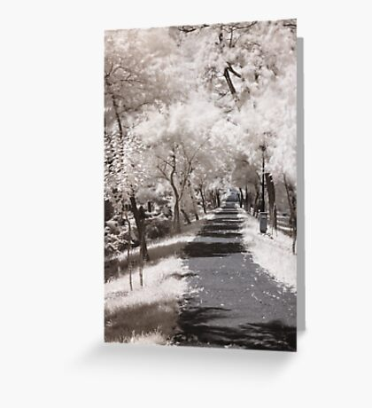 Infrared path Greeting Card
