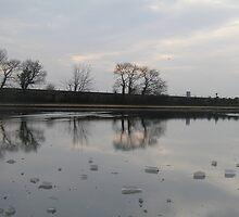 Frozen Reflections Set by lovebitten