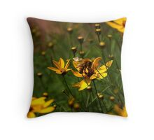 Bumble-Baby Throw Pillow