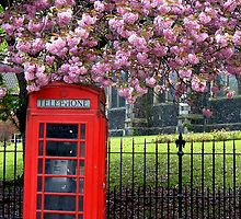 Red phone box by RichardericWest
