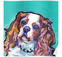 cavalier king charles spaniel Dog Bright colorful pop dog art Poster