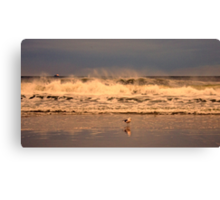 March Madness Long Beach Style Canvas Print