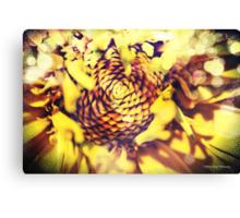 Solar Flares Canvas Print
