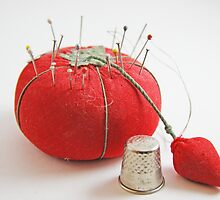 Pincushion by Judi FitzPatrick