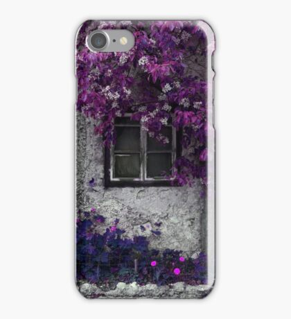 Orchid Vines, Window and Gray Stone iPhone Case/Skin