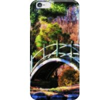 Nature's Oasis iPhone Case/Skin