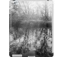 Sunburst over the river iPad Case/Skin