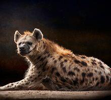 Happy Hyena by Thomas Gehrke