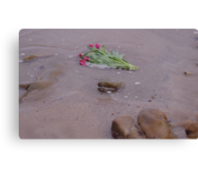 Tulips in the Sea Canvas Print