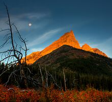 Sunrise, Red Rock Canyon, Waterton National Park, Alberta , Canada. by photosecosse /barbara jones