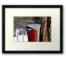 a bucket in vermont Framed Print