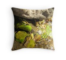 Leaf Falls Throw Pillow