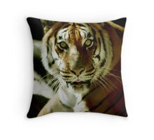 Yellow Bengal Tiger Throw Pillow