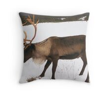 Reindeer in the Cairngorms Throw Pillow