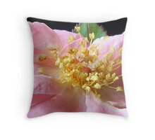 close to claire Throw Pillow