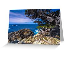 Big Sur Point Lobos State Park, Point Lobos Greeting Card