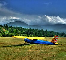 Glider Franconia NH by Wayne King
