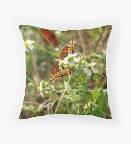 Variegated Fritillary Throw Pillow