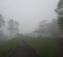 Trees , shelter and lookout in a fog at Picnic Point, Toowoomba, Qld. Australia by Marilyn Baldey