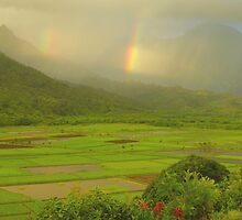 Double Rainbows, Hanalei Valley by Stephen Vecchiotti