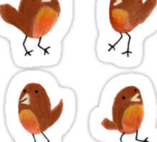 Robins Sticker