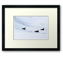 Three Geese a Playing Framed Print