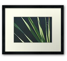 """""""Cat Tails"""" - Down by the Pond Framed Print"""