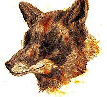 orange fox by Hugo SOUMET