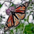 Winged Display by Pat Moore