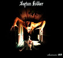 Asylum Fodder by Ross Baraga