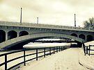 Winter Walk by Leanna Lomanski