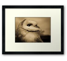 Lyra (Barn Owl) Framed Print