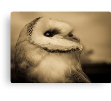 Lyra (Barn Owl) Canvas Print