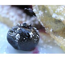 Berry Yum Photographic Print