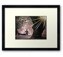 Playing with Giants Framed Print