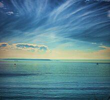 Pacific Skies by Barbara  Brown