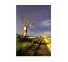 Track to St Peter On The Wall, Bradwell, Essex England. Art Print